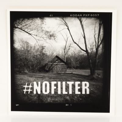 A frame of film, looking at a small shed in a treed yard. There are no leaves. The title is overlaid in white macro text.